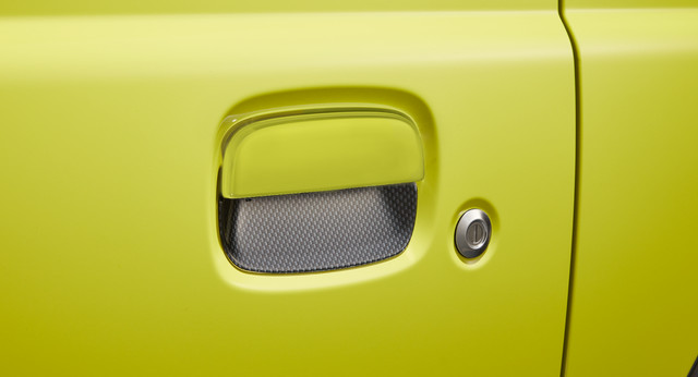 Door Handle Escutcheon (Carbon)